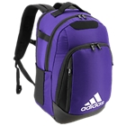 Collegiate Purple-5146852