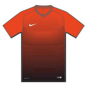 Nike Youth Dry Precision IV Jersey
